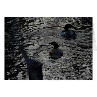 Evening Ducks Lake Tahoe 2014 Cards