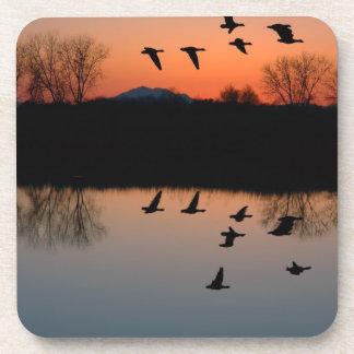 Evening Geese Beverage Coaster