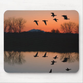 Evening Geese Mouse Pad