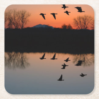 Evening Geese Square Paper Coaster