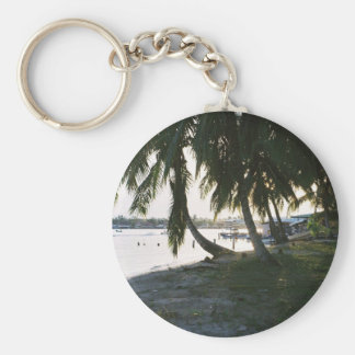Evening in Panama Basic Round Button Key Ring