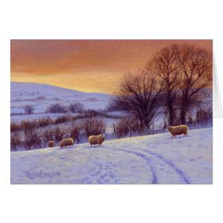 Evening Snow II by Donna Crawshaw Card