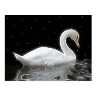 Evening Swan Postcard