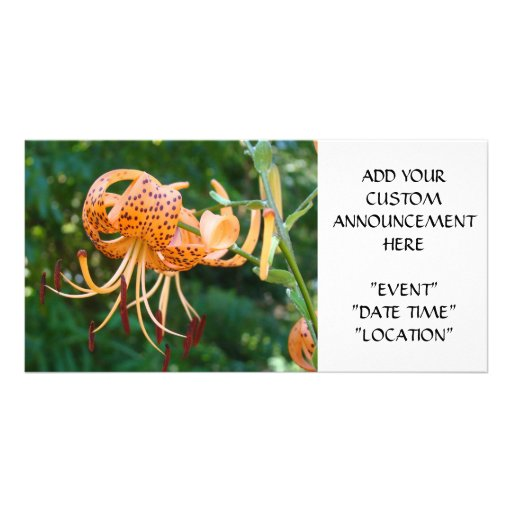 EVENT ANNOUNCEMENT CARDS Orange Tiger Lilies Picture Card