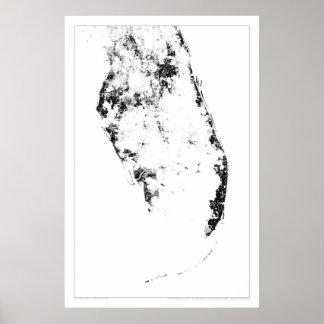 Everglades Census Dotmap Poster