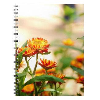 Everlasting Flowers Notebook