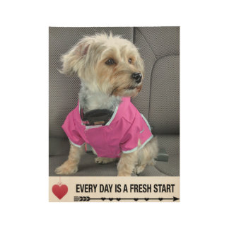 Every day is a fresh start dog poster