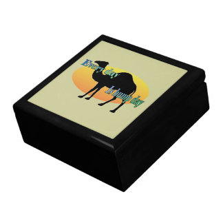 Every Day is Hump Day Large Square Gift Box
