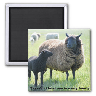Every family has a black sheep magnet