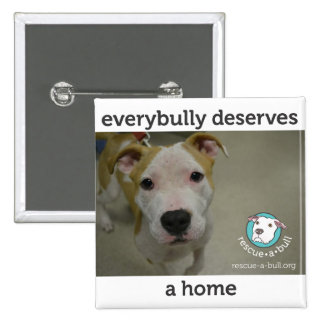 Everybully - simon buttons