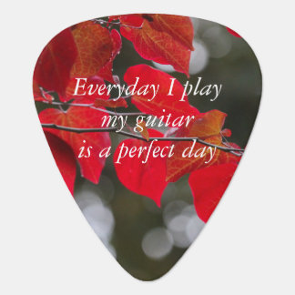 Everyday I Play My Guitar is a Perfect Day Leaves Plectrum