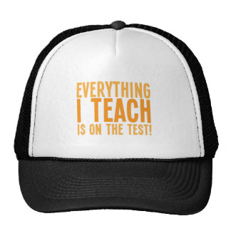 Everything I teach is on the test! Trucker Hat