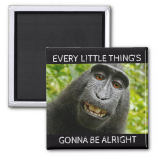 Everything's Alright Monkey Magnet