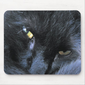 Evil Cat Mousepad