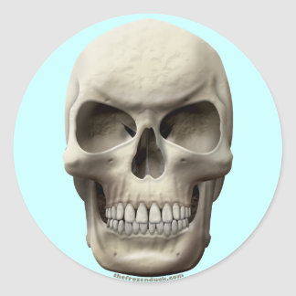 Evil Skull Round Sticker