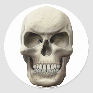 Evil Skull Stickers