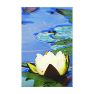 Evil spirit of the water rose after rains canvas print