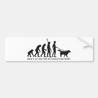 evolution dog bumper sticker