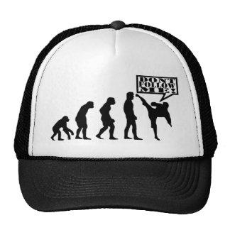 Evolution Hat