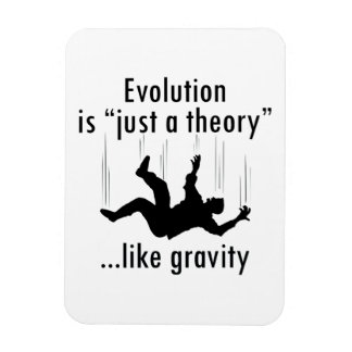 Evolution is just a theory magnet