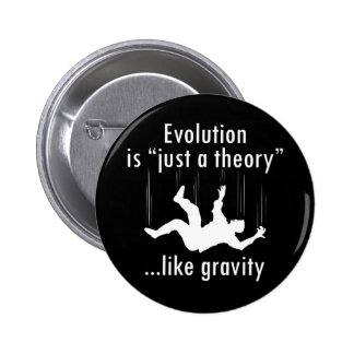 Evolution Just a Theory Pinback Button