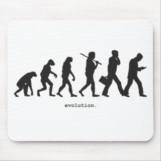 Evolution Muismat