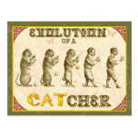 Evolution of a Catcher Post Cards