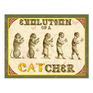 Evolution of a Catcher Postcard