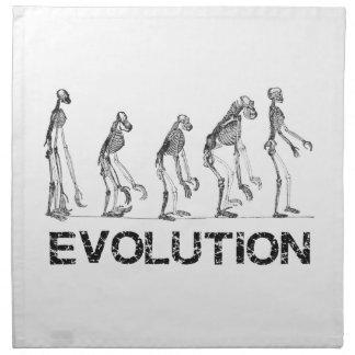 evolution of hymen napkin