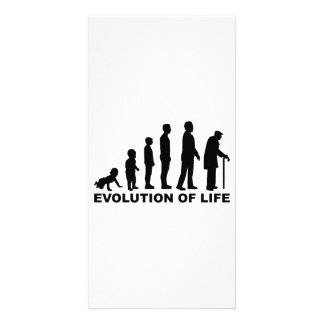 Evolution of Life Picture Card