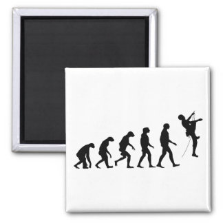 Evolution of Mountain Climbing Square Magnet