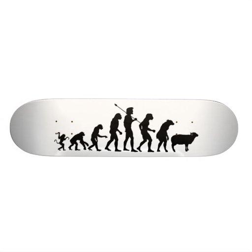 Evolution of the Masses Skateboard