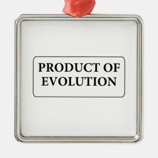 evolution Silver-Colored square decoration
