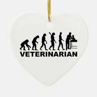 Evolution veterinarian ceramic heart decoration