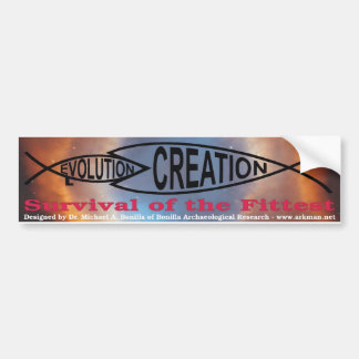 Evolution vs. Creation Bumper Sticker