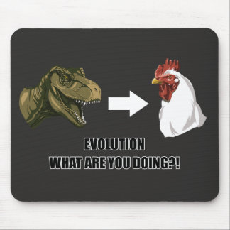 Evolution What Are You Doing Mousepad