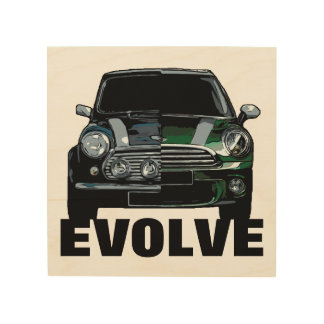 EVOLVE WOOD WALL ART