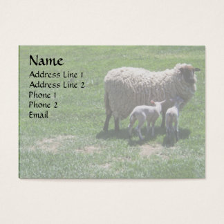 Ewe with Twins Business Card