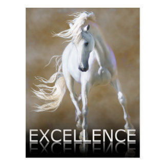Excellence Post Card