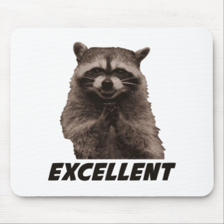 Excellent Evil Plotting Raccoon Mouse Pad
