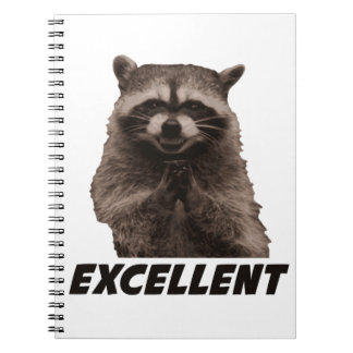 Excellent Evil Plotting Raccoon Note Books