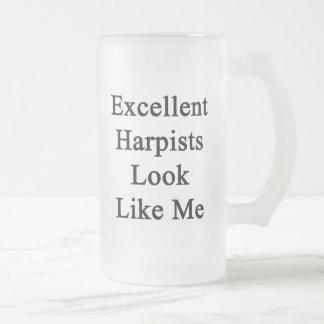 Excellent Harpists Look Like Me Beer Mugs