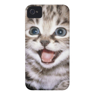 Excited kitten IPhone Case