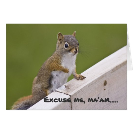 Excuse Me, Ma'am greeting card