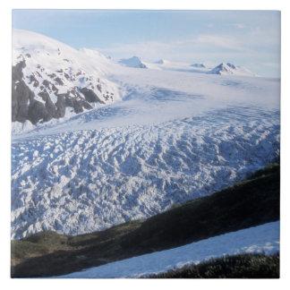 Exit Glacier in Kenai Fjords National Park, Tile