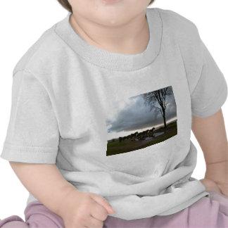 Exmoor Ponies T-shirt
