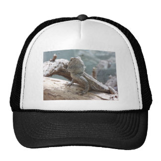 Exotic Animal Mesh Hats