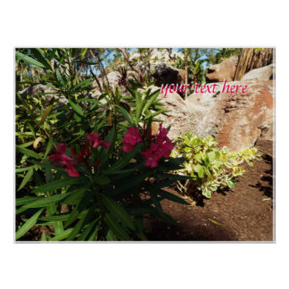 Exotic Bahamas Flowers Poster
