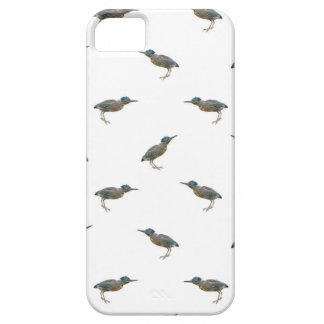 Exotic Birds Motif Pattern iPhone 5 Cover