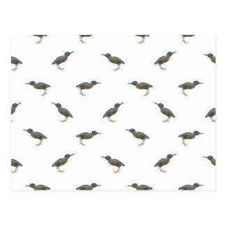 Exotic Birds Motif Pattern Postcard